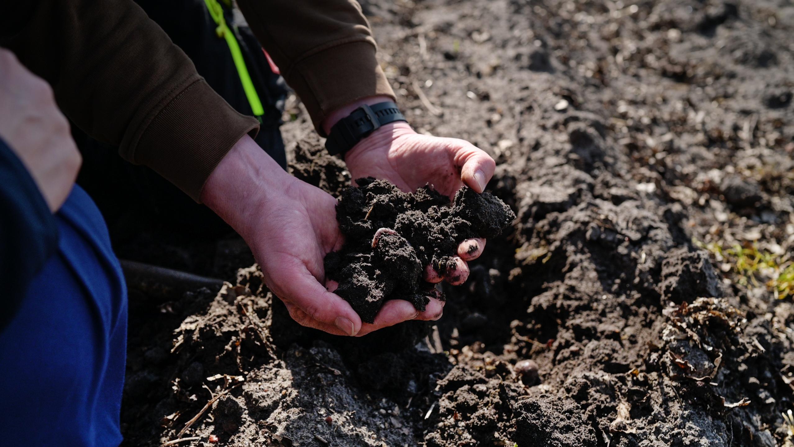 Gesunder Boden mit Heiner Willenborg - Aukse TV - Regenerative Landwirtschaft