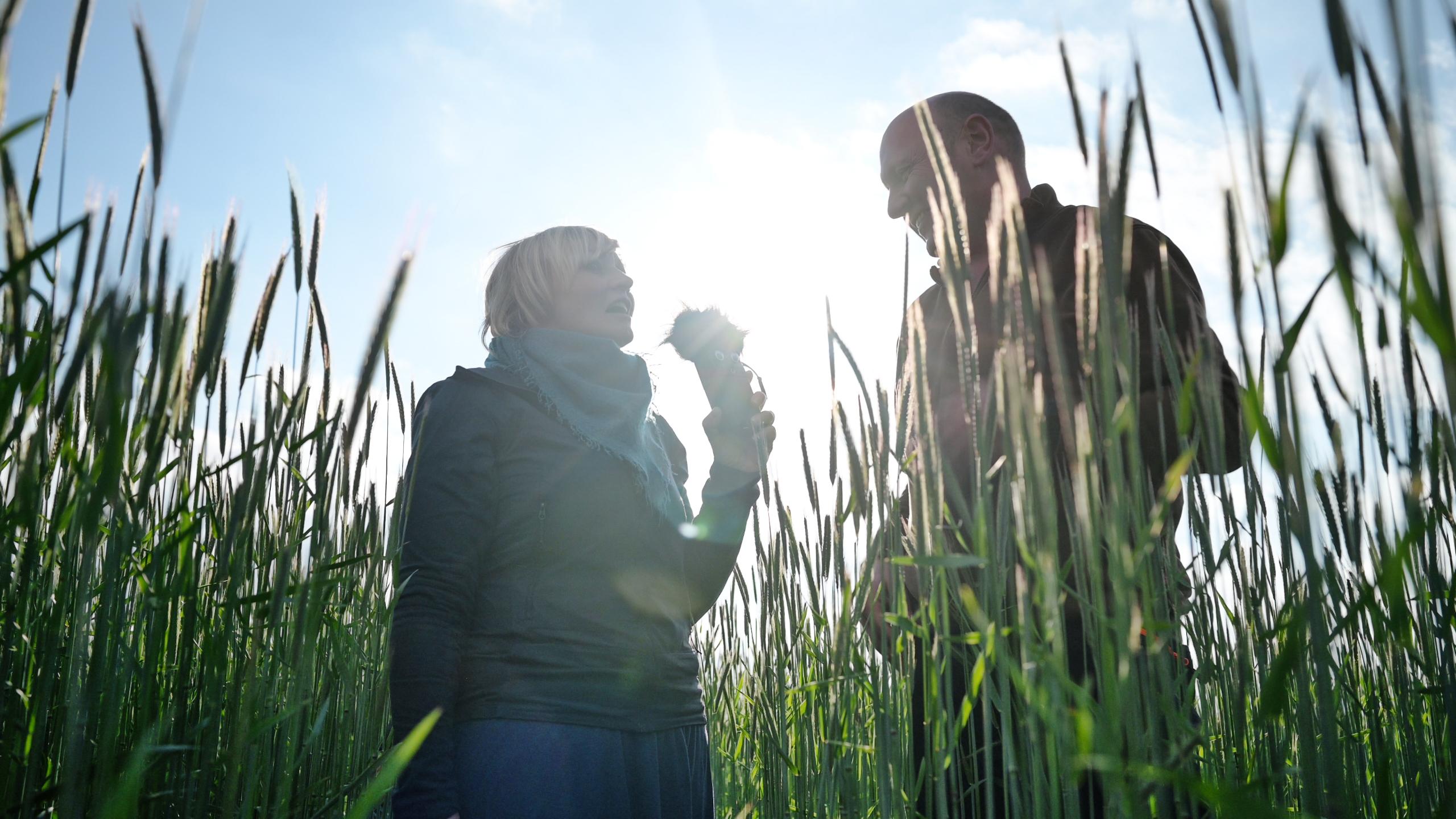 Feldführung mit Heiner Willenborg - Aukse TV - Regenerative Landwirtschaft