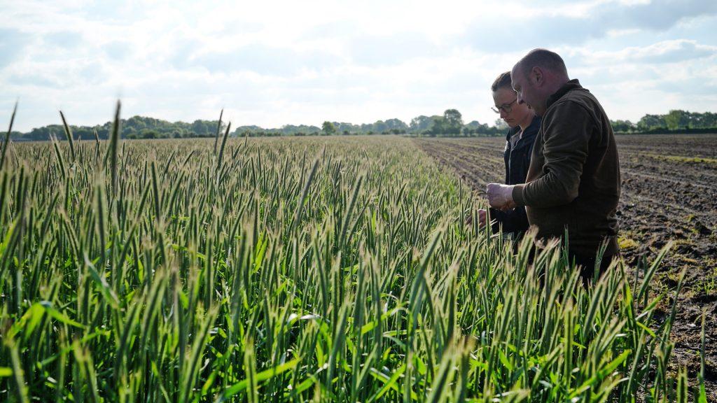 Soilify – Bewegung für eine echte Regenerative Landwirtschaft